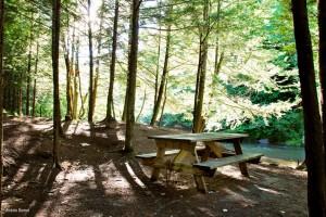 Camping sauvage - Rustique